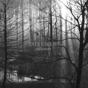 Tate Eskew - oldowan album art